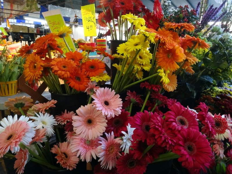 Montreal: The Colors and Tastes of Atwater Market (1/6)