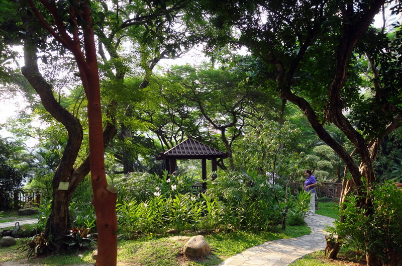 Hong Kong Zoological And Botanical Gardens Opallaontrails