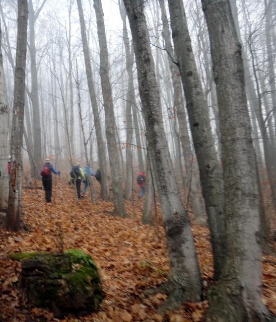 A Hike to Hilton Fall (1/6)