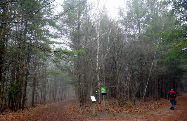 A Hike to Hilton Fall (3/6)