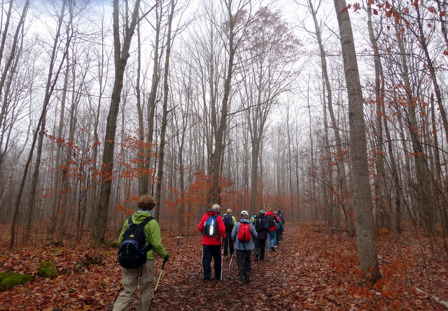 A Hike to Hilton Fall (5/6)