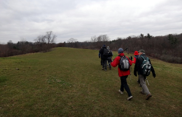 The Interconnecting Trails in Dundas Valley (2/6)