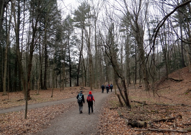 The Interconnecting Trails in Dundas Valley (5/6)