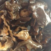 Black Fungi