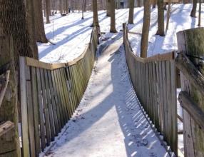 1-Winter Fun